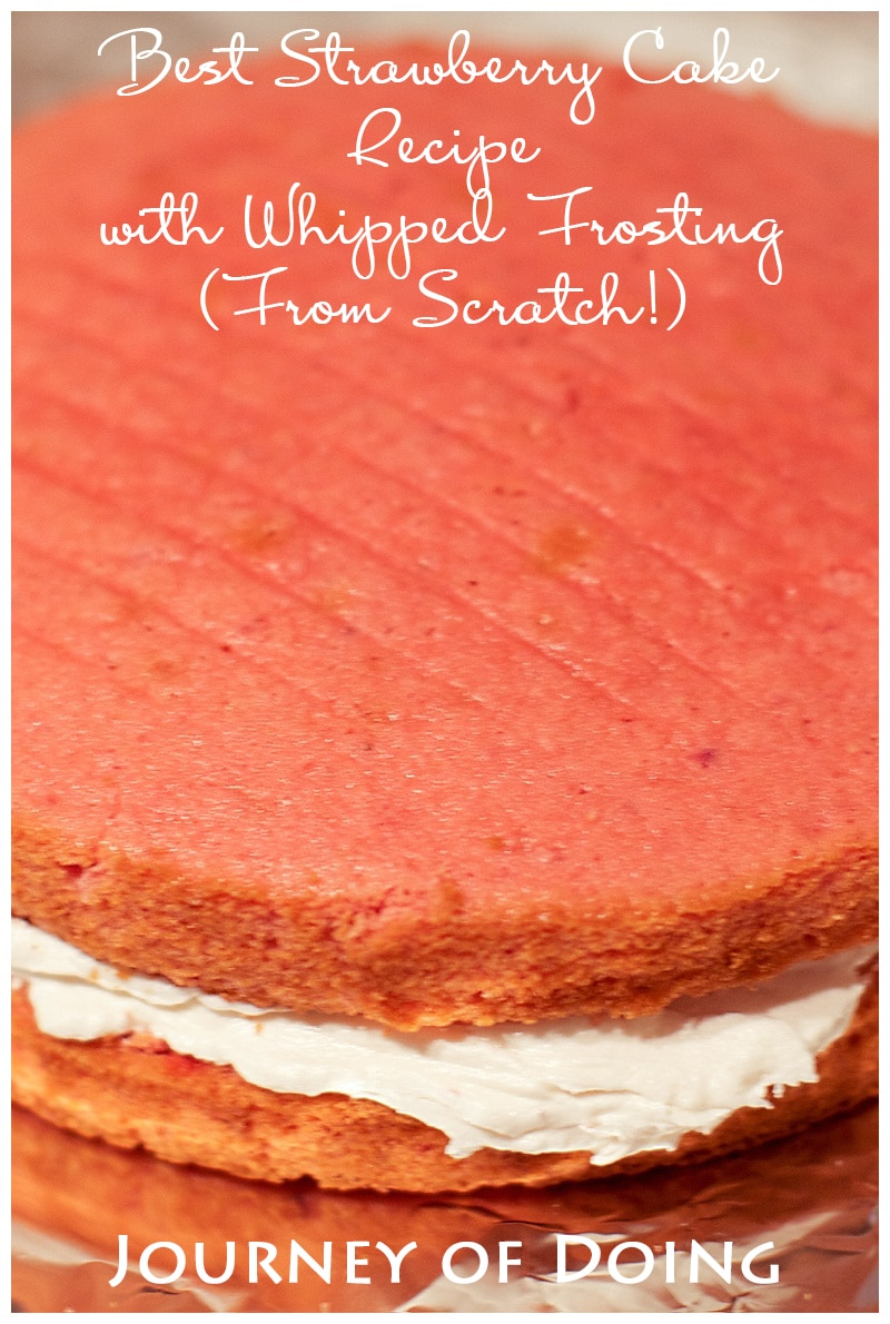 journey of doing - best strawberry cake recipe with whipped frosting