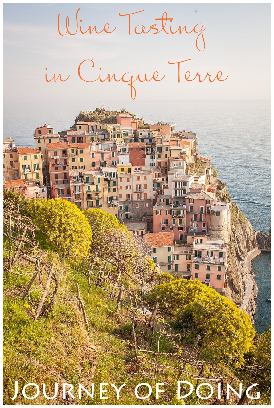 A full review of our enjoyable wine tasting tour in Cinque Terre. Since Sciacchetrà is native to the Cinque Terre, what better place to learn about it and try it than in Manarola?!